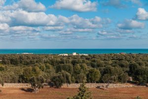 Luxury Masseria Torre Abate Risi Puglia by BeeYond Travel 45