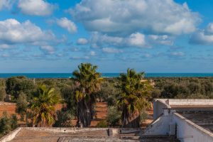 Luxury Masseria Torre Abate Risi Puglia by BeeYond Travel 50