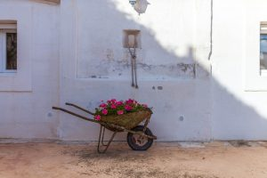 Luxury Masseria Torre Abate Risi Puglia by BeeYond Travel 6 | Courtyard