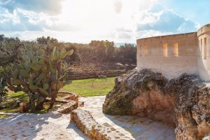Luxury Masseria Torre Abate Risi Puglia by BeeYond Travel 9 | Garden