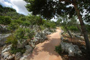 Villa Myrtos walk up