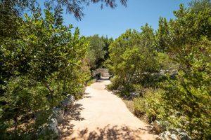 Villa Myrtos pathway
