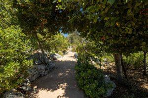 Villa Myrtos pathway 2